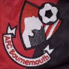 Bournemouth- Season of Success